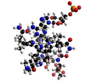 coenzymeB12