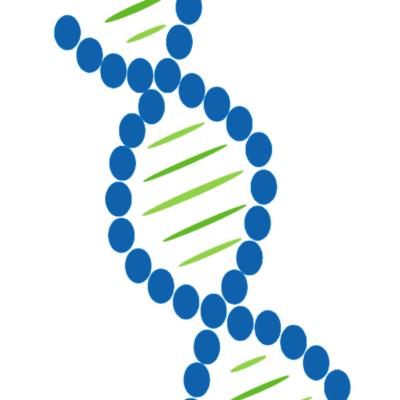 DNS alapú speciális genetikai vizsgálat